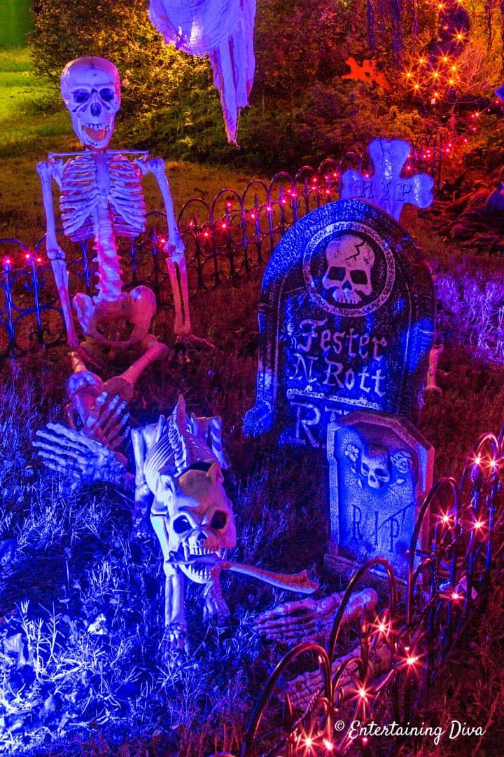 Skeleton and dog skeleton in Halloween graveyard