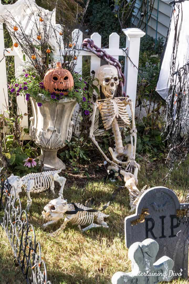 Halloween graveyard with skeleton and chains
