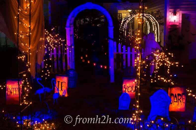 "Halloween ""Enter If You Dare"" Luminaries in a front yard"