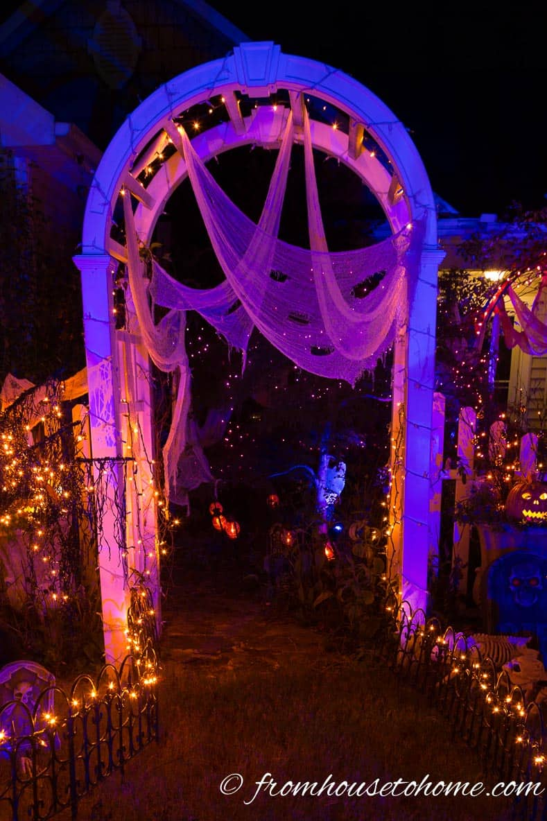 Front yard arbor decorated for Halloween with blue and purple lights