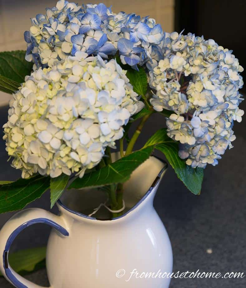 A twist tie keeps the stems close together | Hydrangea-inspired Blue and White Tablescape | If you're looking for Easter dinner or spring table ideas, this blue and white table setting has a hydrangea centerpiece that is perfect for the occasion. The blue and white place setting is really pretty, too.