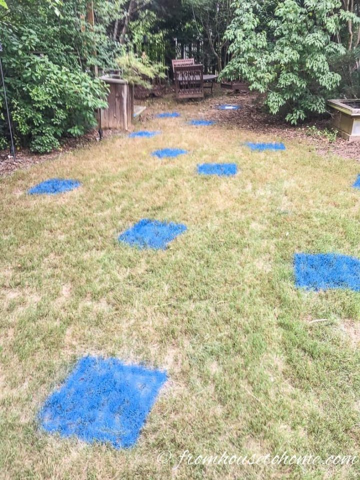 The backyard with many blue squares painted on the grass