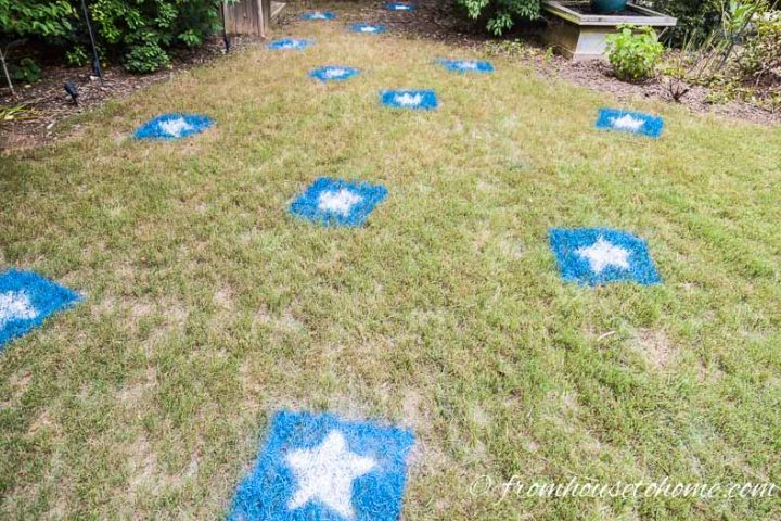 The backyard with blue and white star decorations painted on the grass