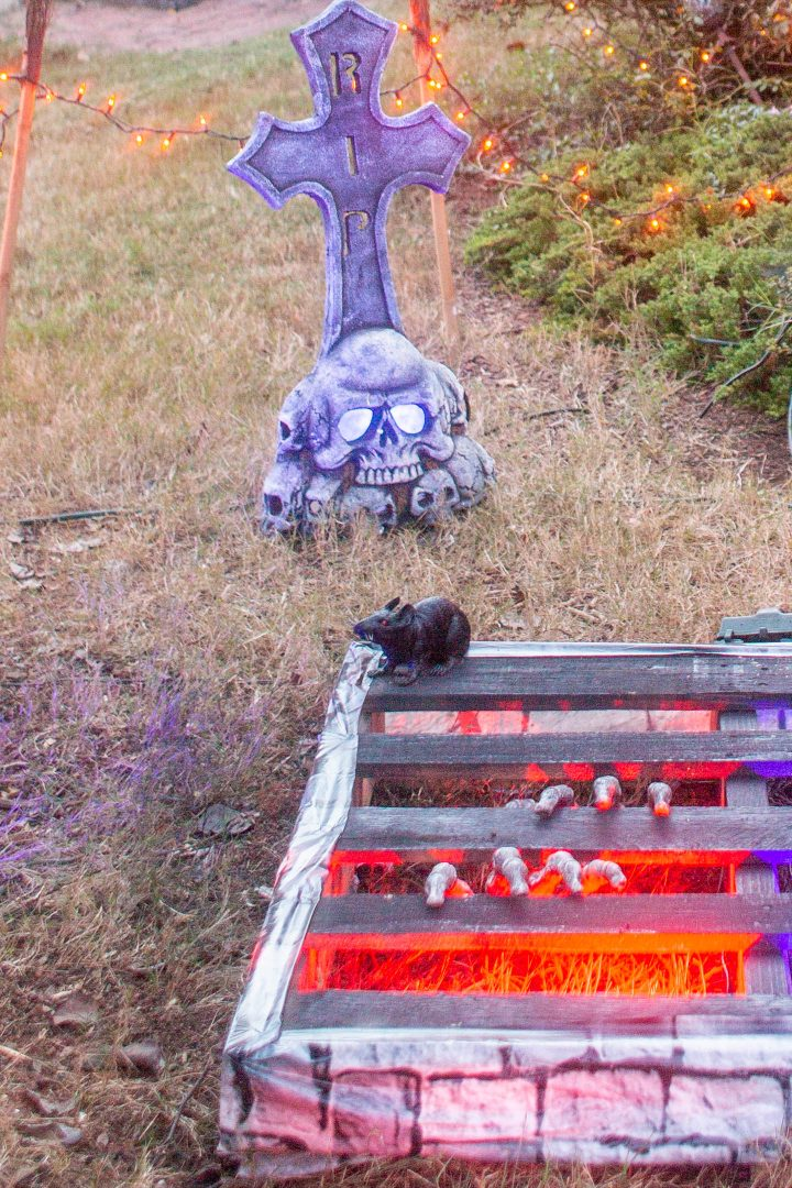 Fake rat sitting on a dungeon prop in a Halloween graveyard