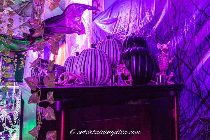Halloween faux pumpkins and skeleton mice