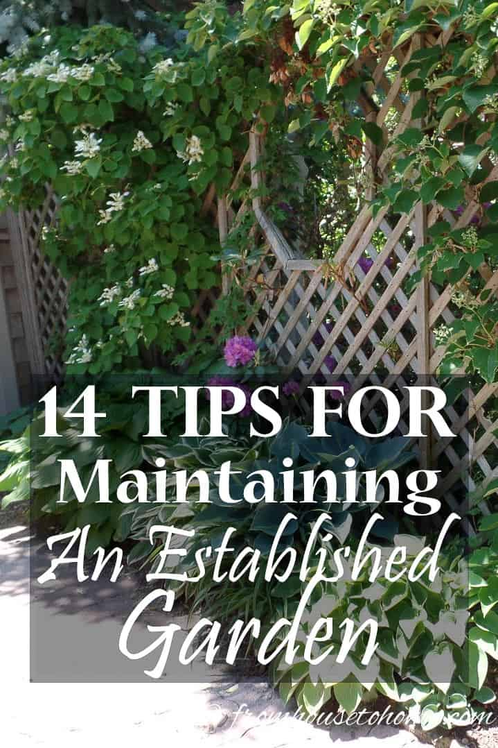15 tips for maintaining an established garden