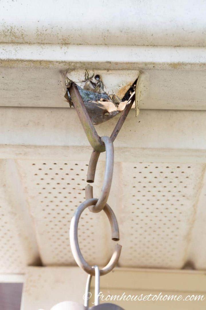 Rain chain hooked onto the bracket