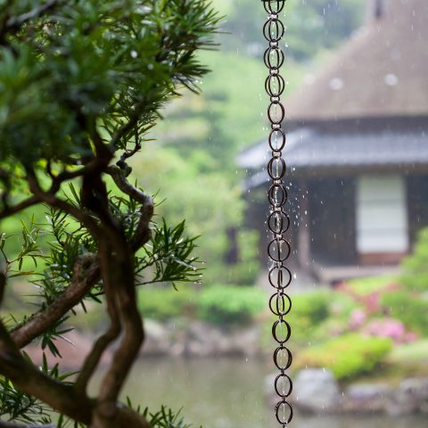 Rain chain with Japanese garden in the background