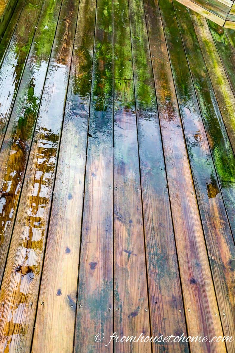 The deck after being rinsed ...guess which part has been washed... | The Best (Inexpensive and Eco-Friendly) DIY Deck Cleaner Ever!