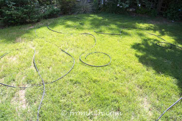 Soaker hose laid out in the sun to make it more flexible