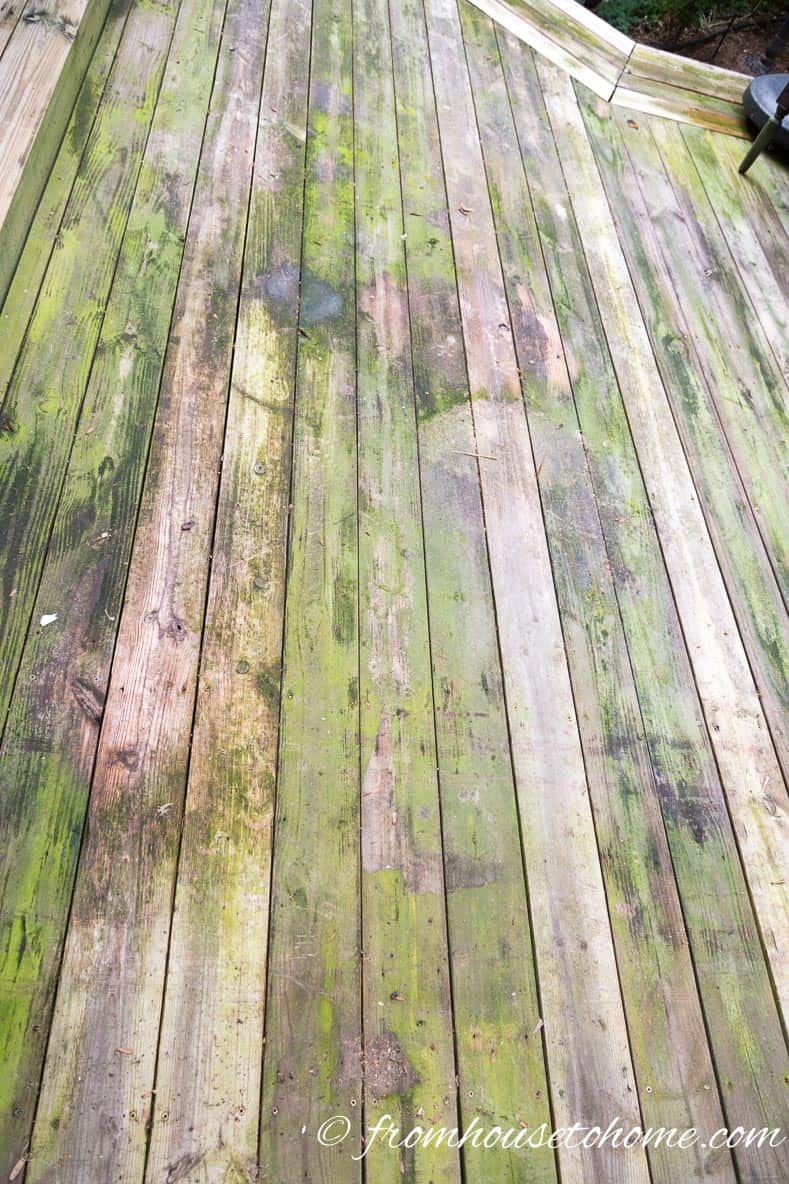 "The Deck ""Before"" using the best (inexpensive and non-toxic) homemade deck cleaner ever!"