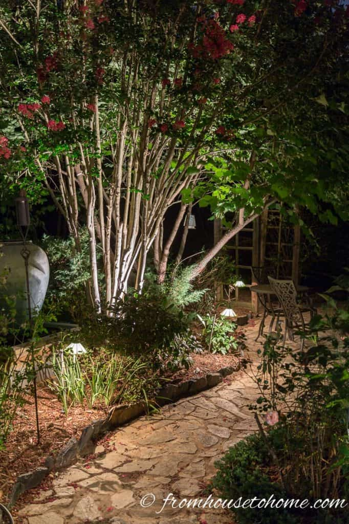 Landscape lighting adds interest to your garden at night