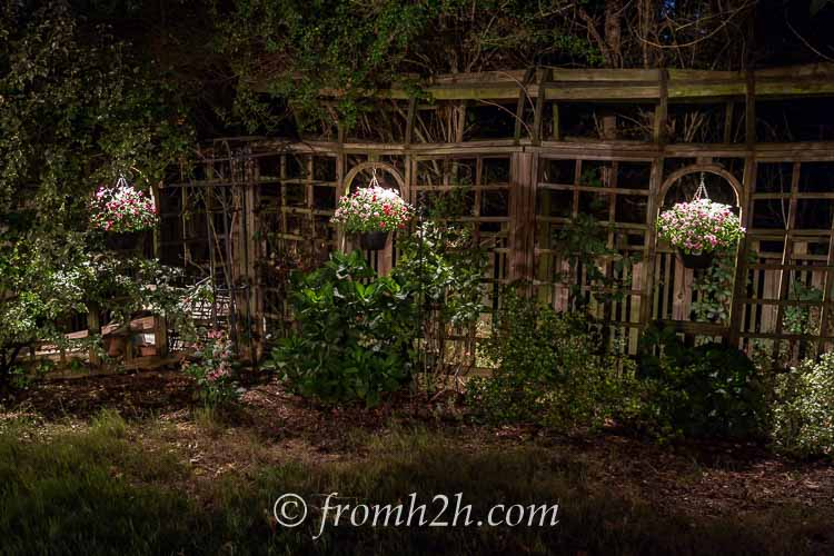 Downlighting on hanging baskets makes them glow at night | How To Design And Install Landscape Lighting