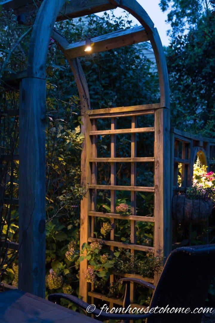 Downlighting in an arbor in the garden