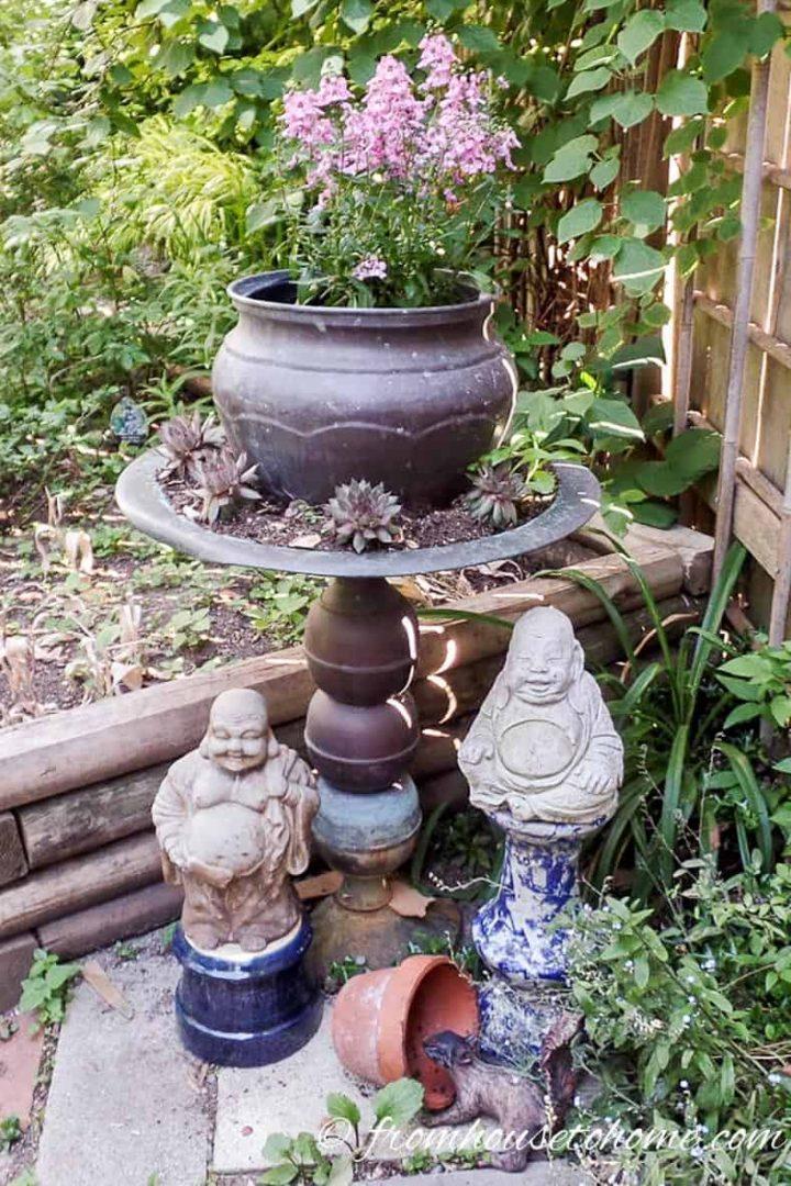 A bird bath used as a planter