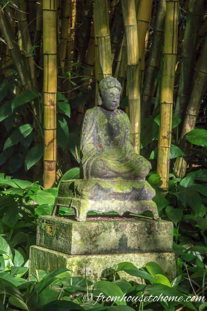 Buddha statue in front of some bamboo at Allerton Gardens in Kauai, HI