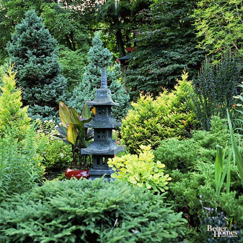 Plant evergreens, via bhg.com