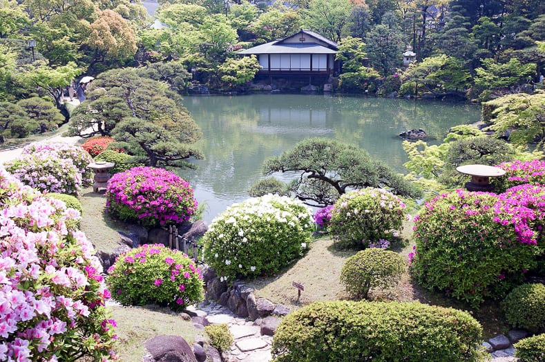 Japanese garden pond and azaleas, via commons.wikimedia.org
