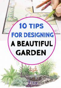 tips for successful landscape design
