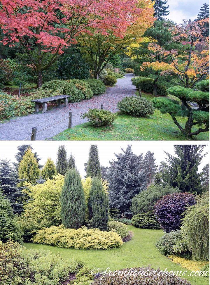 Plan for trees early in your landscape design (images via dplett and ronstik / stock.adobe.com)