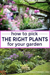Choose the right garden plants
