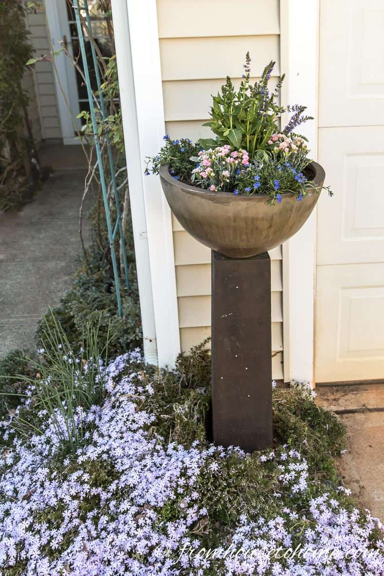 Move the planter into place before watering | The No-Fail Method for Planting Beautiful Containers | I use this formula to plant all of my outdoor containers. It never fails to produce beautiful planters that are easy to create.