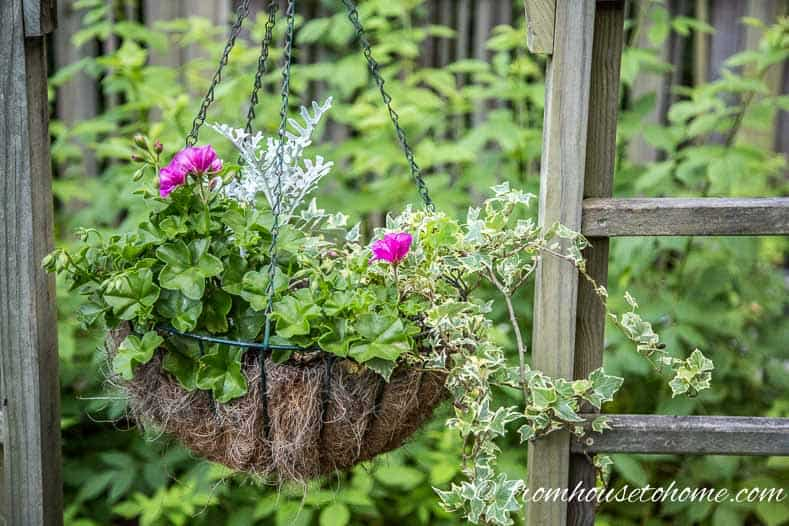 The No-Fail Method for Planting Beautiful Containers | I use this formula to plant all of my outdoor containers. It never fails to produce beautiful planters that are easy to create.