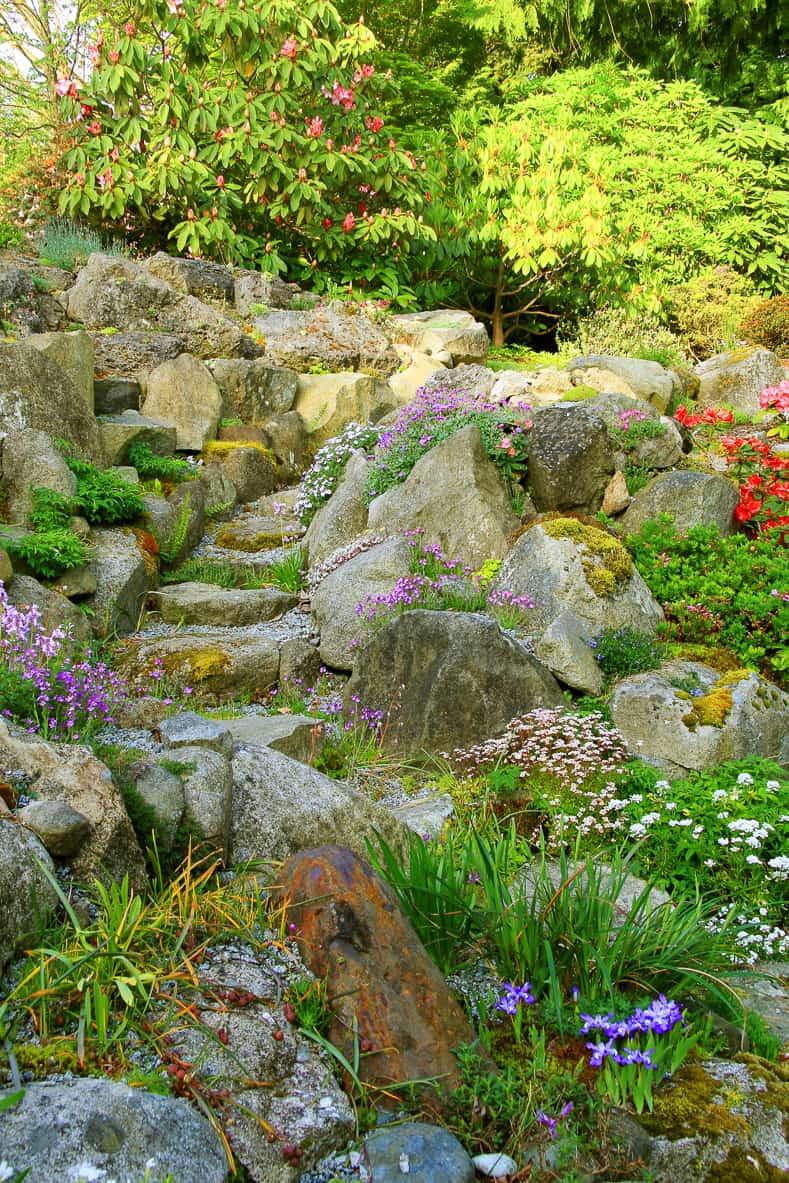 A wide rock garden can deter deer | © Barbara Helgason - stock.adobe.com