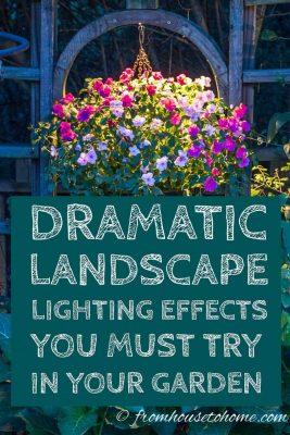 landscape lighting effects