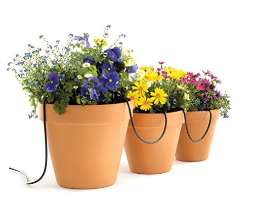 Automated watering system for window boxes