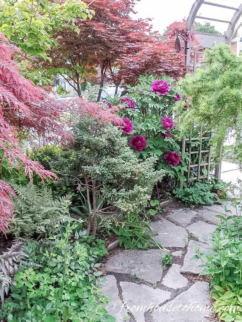 Flagstone walkway in front yard