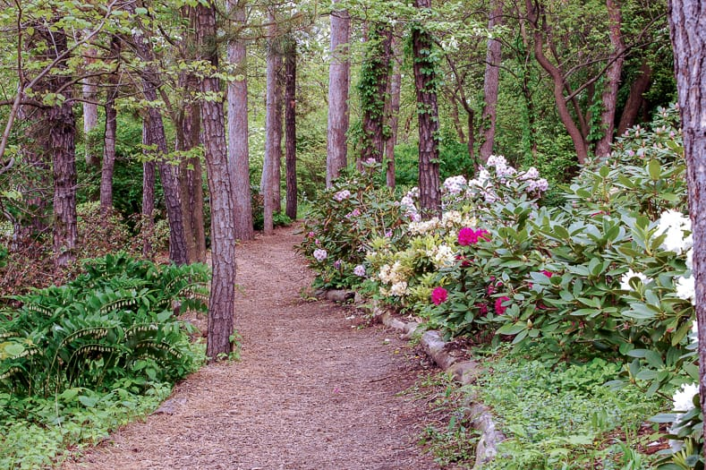 Mulch garden path | © Susan Montgomery - stock.adobe.com