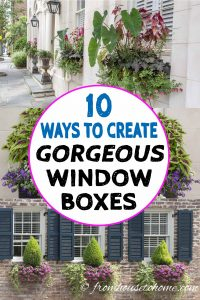 Charleston window box ideas