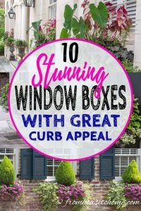 10 stunning window boxes with great curb appeal