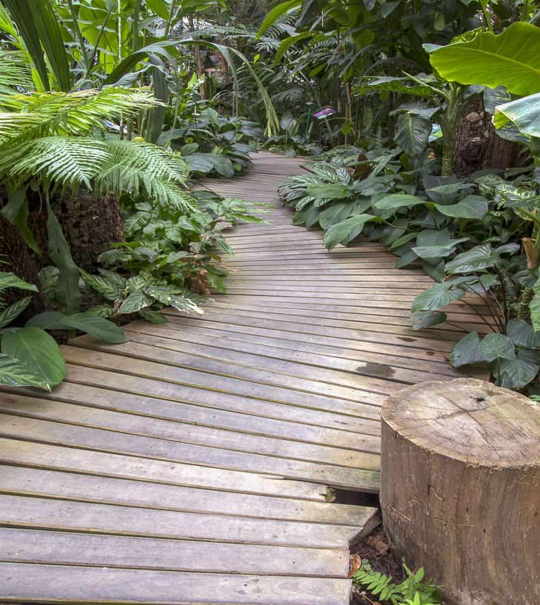 Wood garden path | © scenery1 - stock.adobe.com