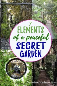 Elements of a secret garden