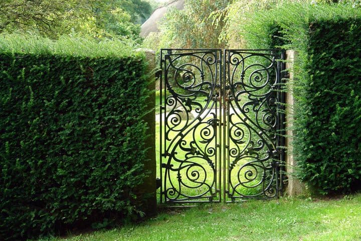 Black wrought iron gate in green hedge