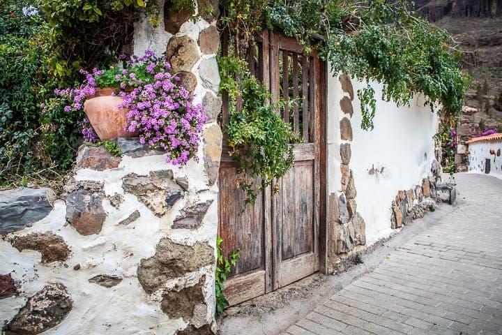 old wooden door as garden gate
