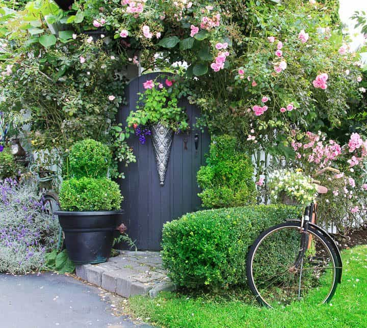 Arched garden gate in arbor covered in roses