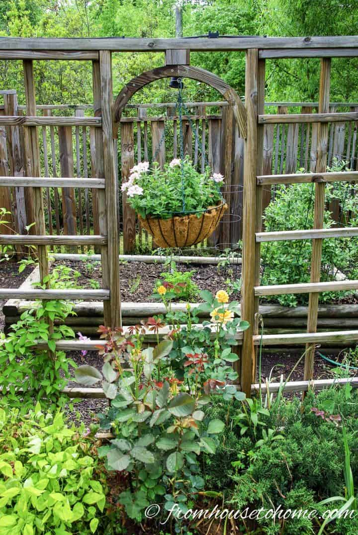Privacy screen separates the flower garden from the vegetable garden