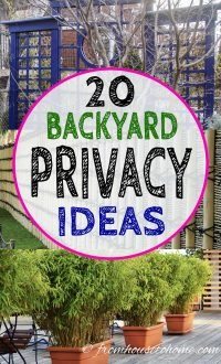 Privacy screen ideas for your backyard garden