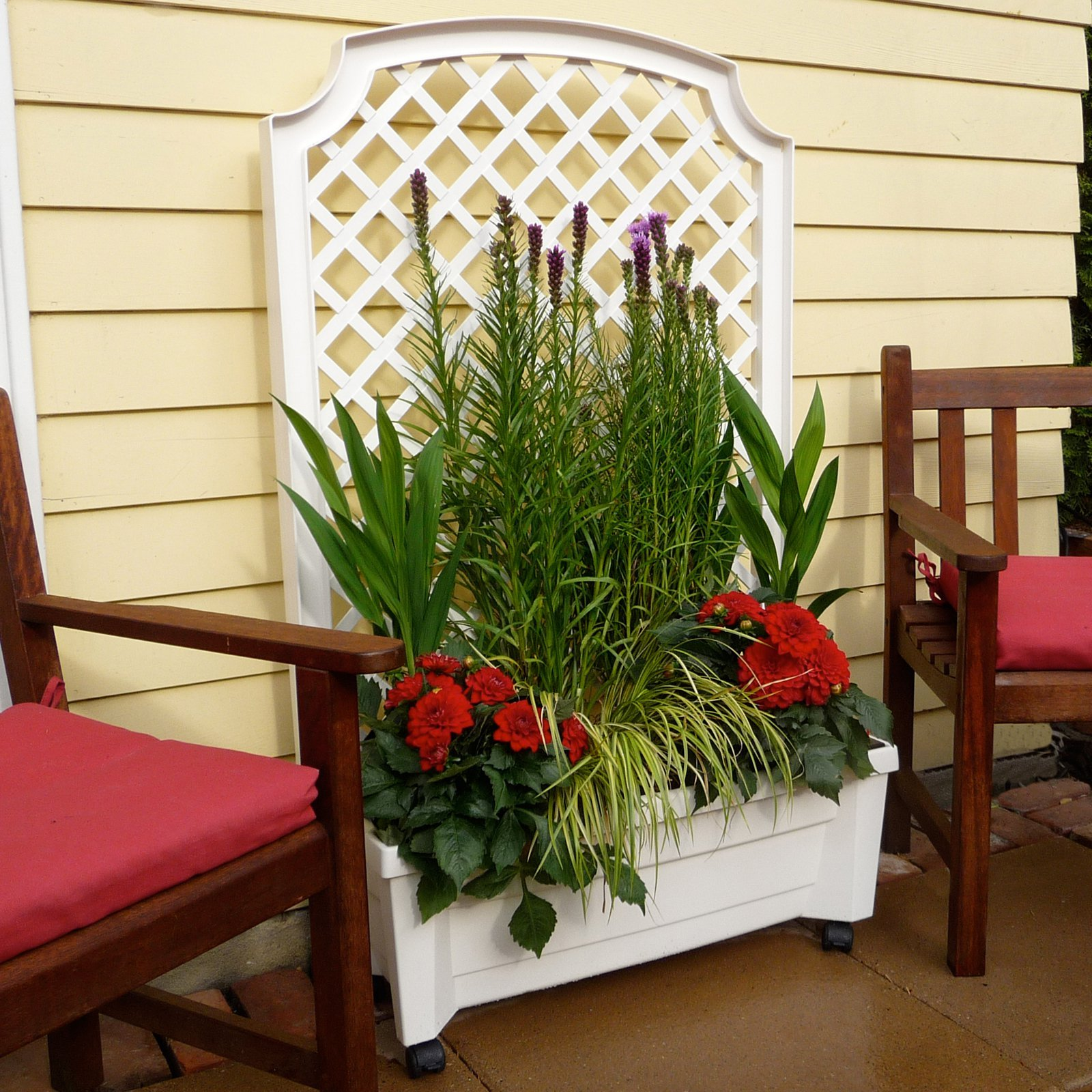 Planter trellis privacy screen on wheels