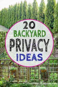 Privacy screen ideas for your backyard garden