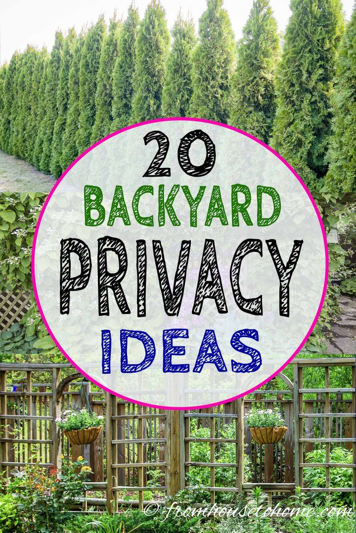 20 Backyard Privacy Ideas For Screening Neighbors Out Gardening