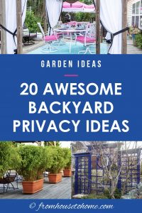 awesome backyard privacy ideas