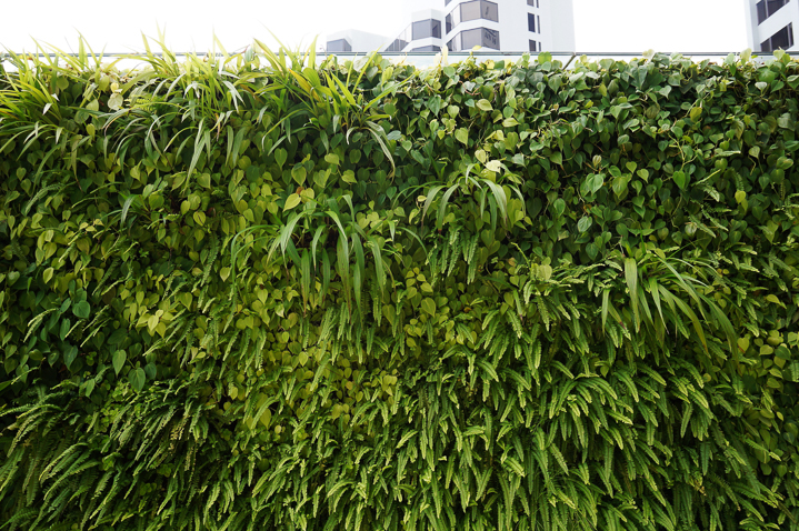 Living wall privacy screen ©eqroy - stock.adobe.com