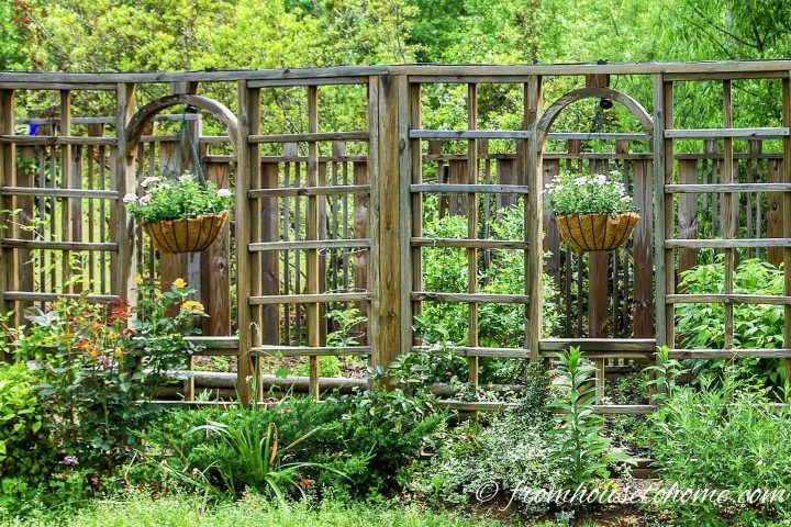Lattice privacy fence with hanging planters