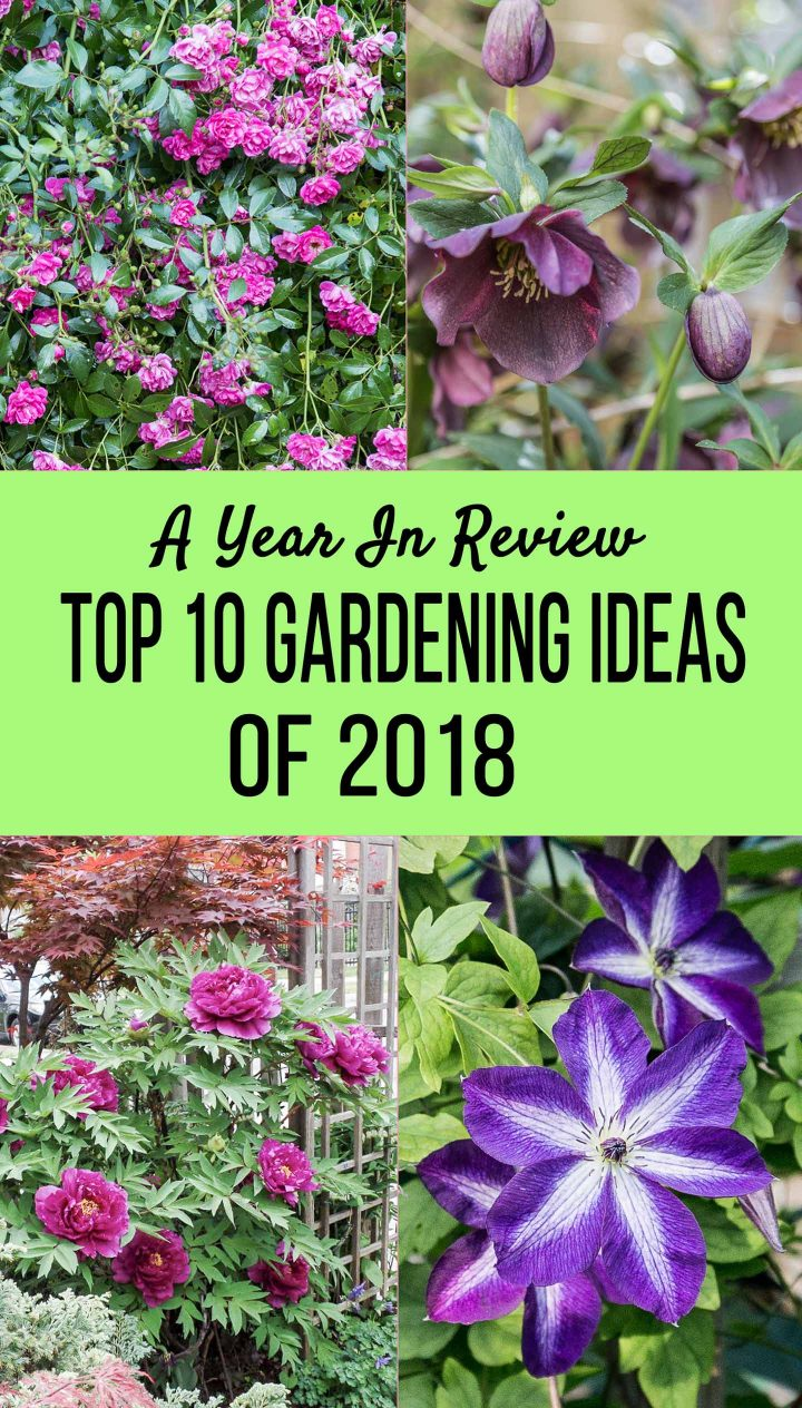 best garden ideas of 2018