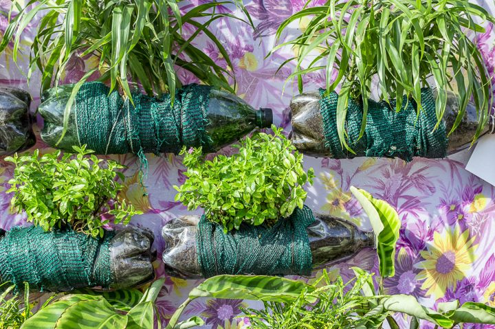 Fabric-wrapped soda bottle vertical garden ©promicrostockraw - stock.adobe.com