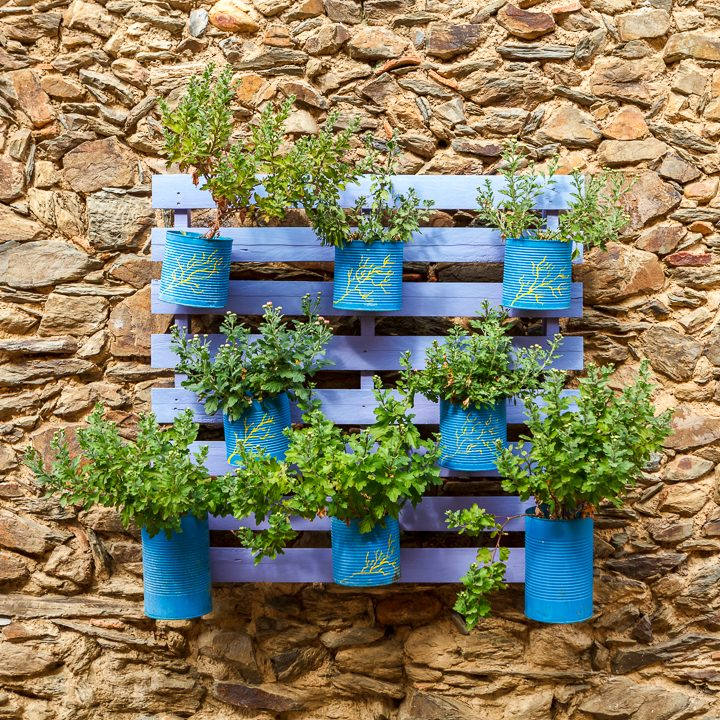 Painted vertical pallet garden ©Gelpi - stock.adobe.com